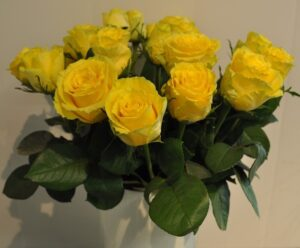 Kollane roos